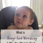 I never knew what baby-led weaning was until now. Thanks for the informative article!