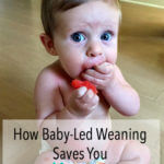 Wow! I never knew I could save money by trying baby-led weaning. I am definitely pinning this and saving it for the future!