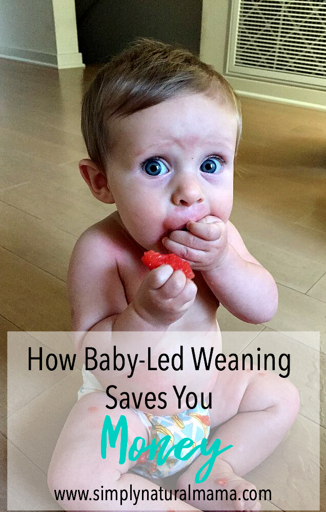 Baby Led Weaning Saves You Money