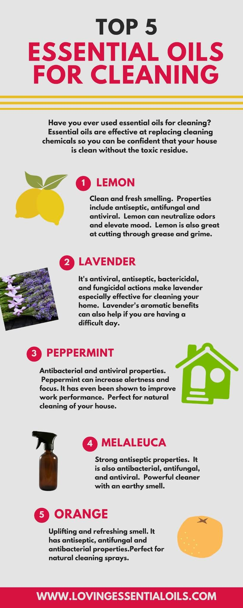 cleaning charts guaranteed to make you an expert essential oils for cleaning