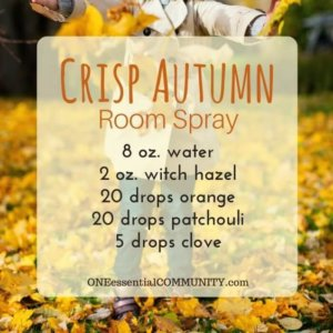 Crisp Autumn Room Spray